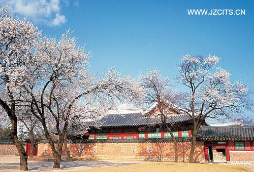 高丽印象 韩国济州 首尔5+1日游